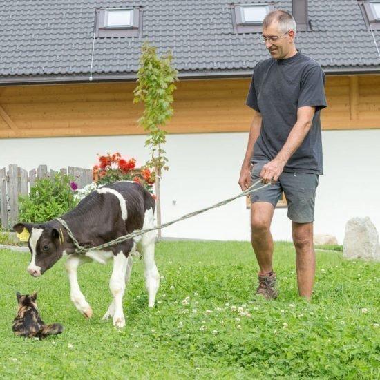 impressionen-vom-baeckerhof-taisten-welsberg-suedtirol-38